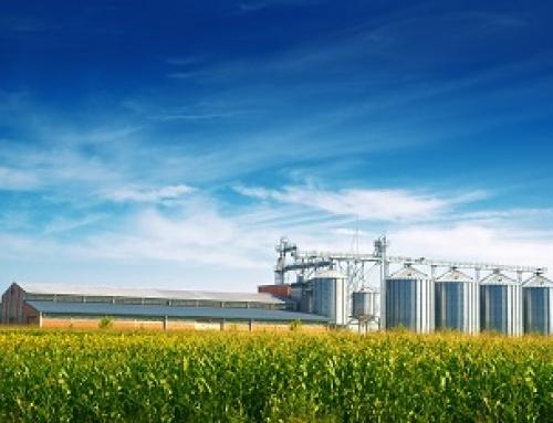 Компанії, зайняті у секторі сільського господарства