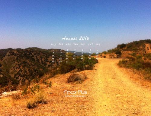 Заставка на робочий стіл та календар на серпень 2016