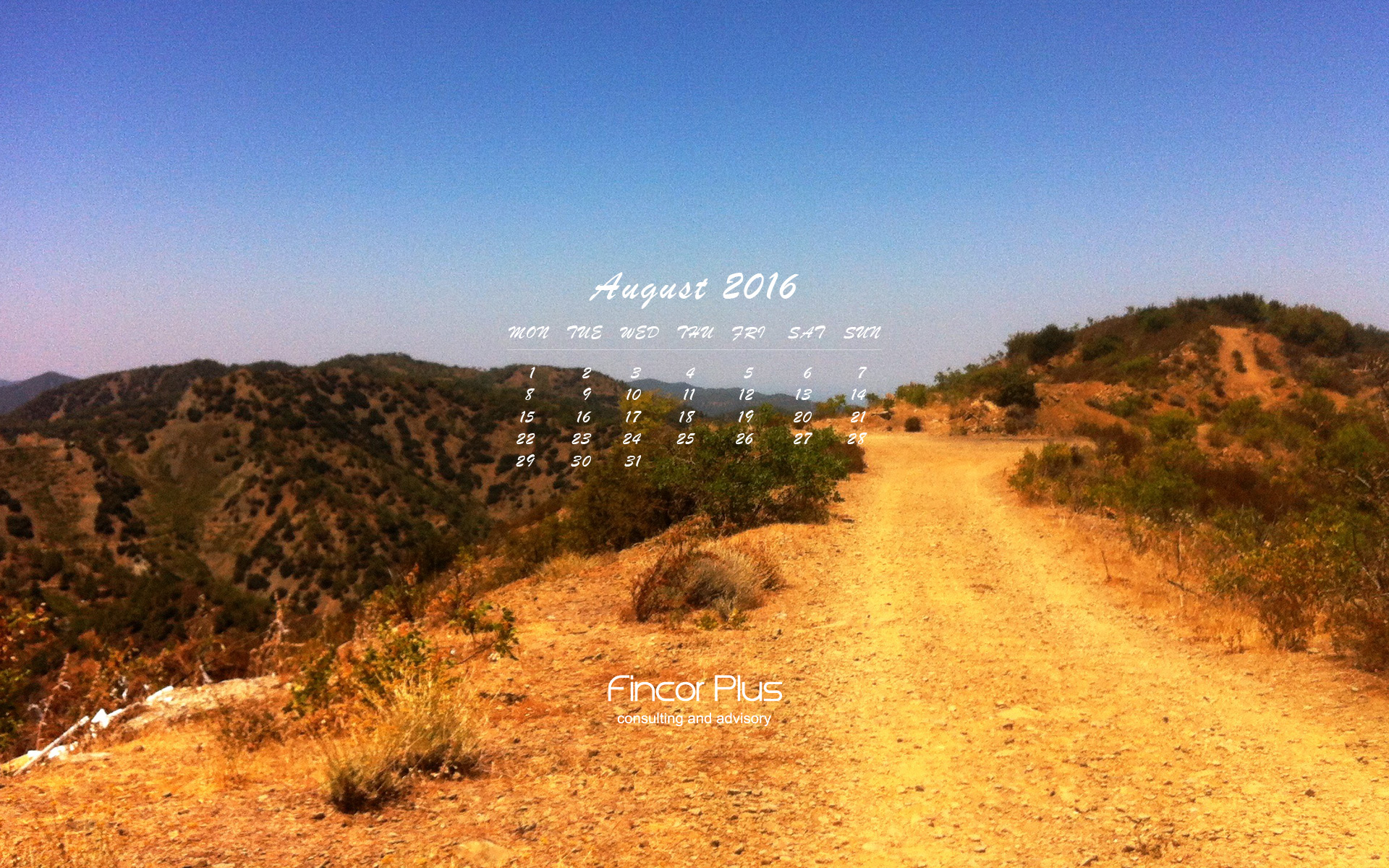 FincorPlus wallpaper August 2016