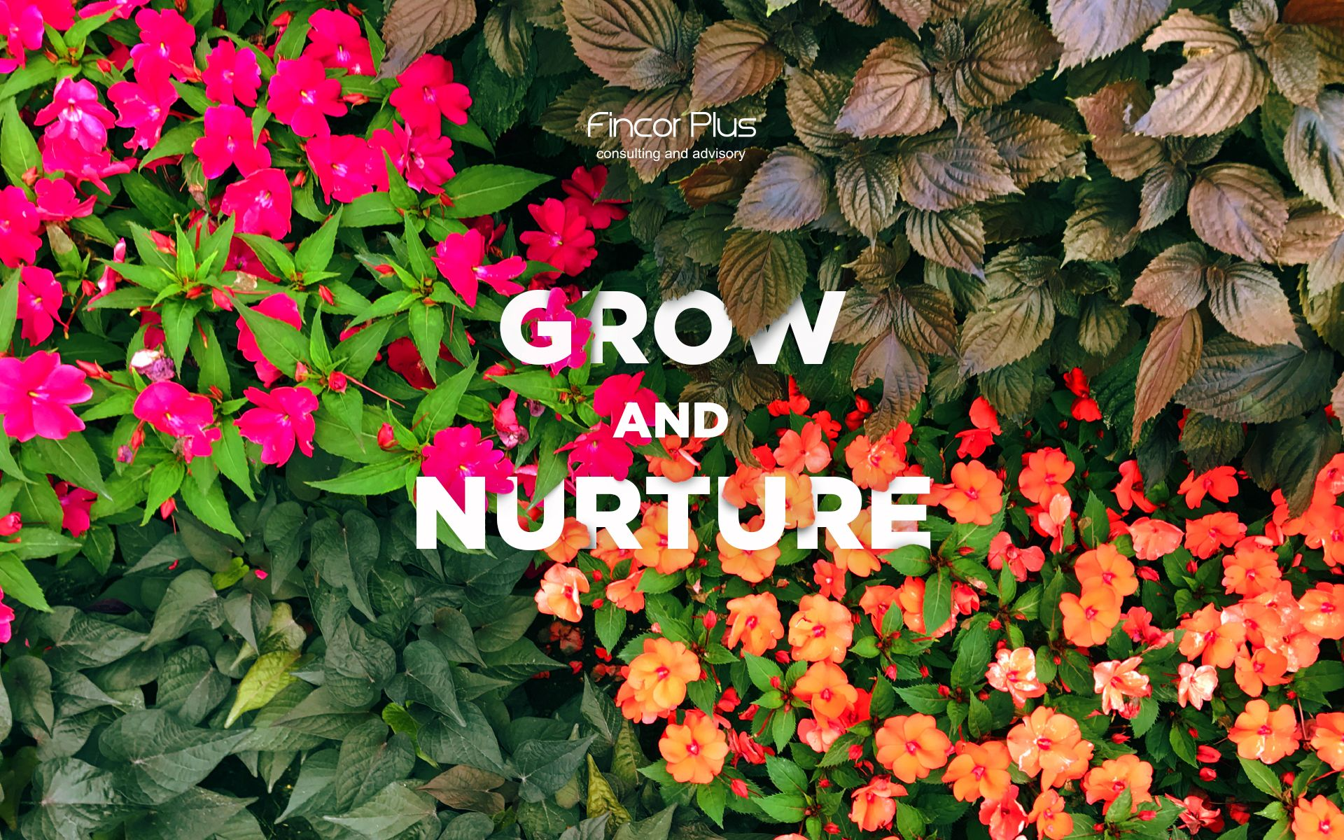 Grow-and-nurture-wallpaper